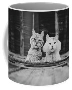 Black And White Portrait Of Two Aadorable And Curious Cats Looking Down Through The Window Coffee Mug