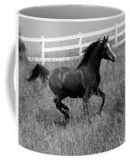Black And White Steed Coffee Mug