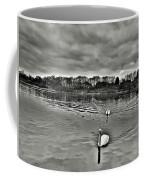 Black And White Swans  Coffee Mug