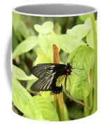 Black And Yellow Butterfly Coffee Mug