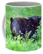 A Florida Black Bear Coffee Mug