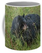 Black Bear Sow Coffee Mug