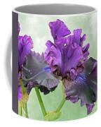 Black Bearded Iris Coffee Mug