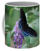 Black Beauty Coffee Mug