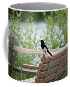 Black-billed Magpie Pica Hudsonia Coffee Mug