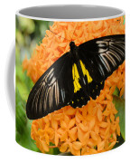 Black Butterfly Coffee Mug