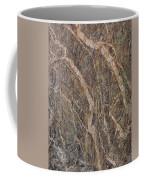 Black Canyon Geology Coffee Mug
