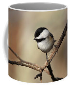 Black-capped Chickadee Portrait Coffee Mug