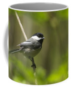 Black-capped Chickadee Coffee Mug