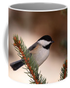 Black-capped Cickadee II Coffee Mug