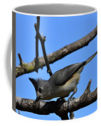 Black Crested Titmouse Coffee Mug