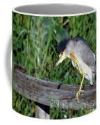 Black Crown Night Heron Scratching Coffee Mug