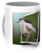 Black Crowned Night Heron - Use Red-cyan 3d Glasses Coffee Mug