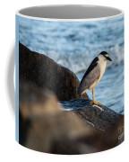 Black Crowned Night Heron B3975 Coffee Mug