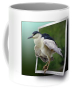Black Crowned Night Heron Coffee Mug
