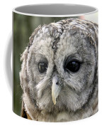Black Eye Owl Coffee Mug