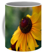 Black Eye Susan Coffee Mug
