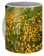 Black Eyed Susans-1 Coffee Mug