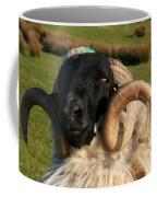 Black Faced Ram Coffee Mug