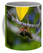 Black Grasshopper Coffee Mug