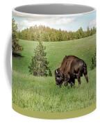 Black Hills Bull Bison Coffee Mug by Robert Frederick