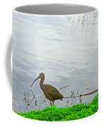 Black Ibus Coffee Mug