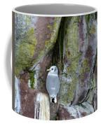 Black Legged Kittiwake Coffee Mug