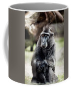 Black Macaque Monkey Sitting Coffee Mug