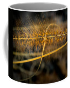 Black Pennisetum In Setting Sun Coffee Mug