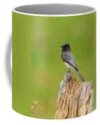 Black Phoebe Coffee Mug