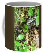 Black Rat Snake Coffee Mug