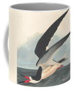Black Skimmer Coffee Mug