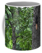 Black Squirrel With Blond Tail  Coffee Mug