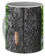 Black Squirrel With Blond Tail Two  Coffee Mug