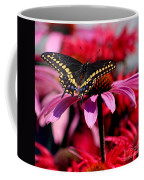 Black Swallowtail Butterfly On Coneflower Square Coffee Mug