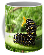 Black Swallowtail Caterpillar Coffee Mug