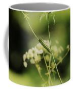 Black Swallowtail Caterpillar Coffee Mug