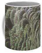 Black Swan Feathers Coffee Mug