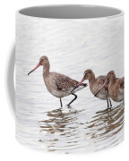 Black-tailed Godwits Coffee Mug