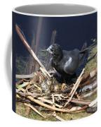 Black Tern On Nest Coffee Mug