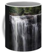Black Water Falls Wv Coffee Mug