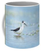 Black-winged Stilt Coffee Mug
