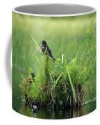 Blackbird Island Coffee Mug