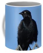 Blackbird On Chain Link Fence Coffee Mug