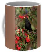 Blackbird Red Berries Coffee Mug