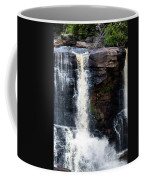 Blackwater Falls #5 Coffee Mug