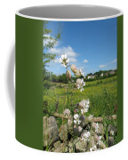 Bladder Campion On Stone Wall Coffee Mug