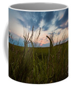 Blades Of Sunset Coffee Mug