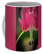 Bleeding Heart Macro Coffee Mug