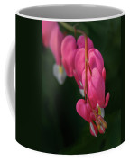 Bleeding Hearts Flowers Coffee Mug
